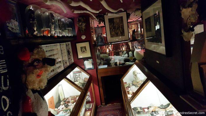 Cabinet de curiosités Londres Victor Wynd Museum