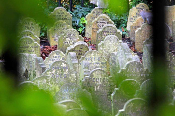 Cimetière des animaux Londres Hyde Park